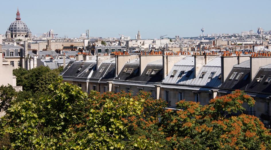 Zielone dachy